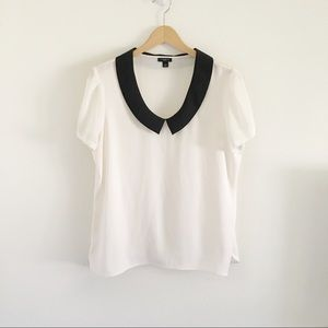 Ann Taylor Ivory and Black Peter Pan Collar Blouse